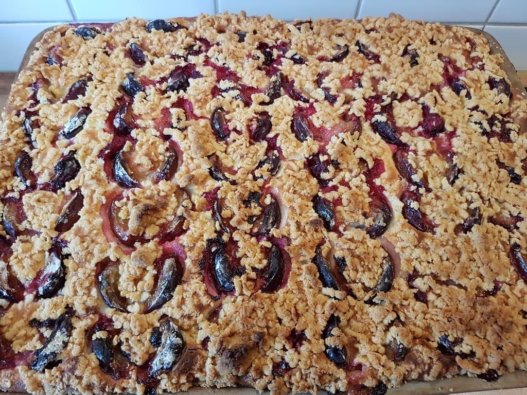 Zwetschgen Quark Kuchen mit Streussel auf dem großen Ofenzauberer